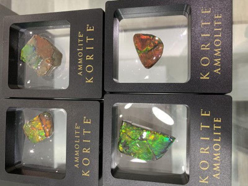 Picture of Korite Ammolite small hand specimen